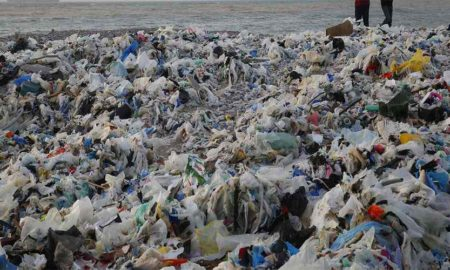 Plastic Pollution in Pakistan
