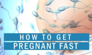 how-to-get-pregnant-fast